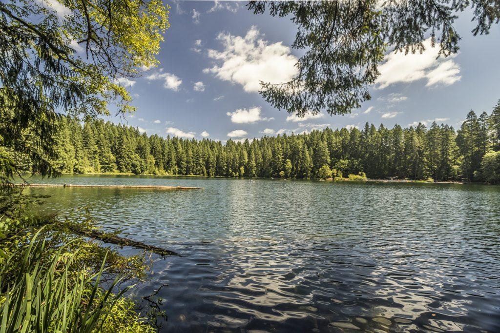 kress lake. black friday fishing kress lake y