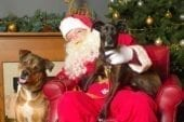 The Humane Society for Southwest Washington welcomes return of the holidays