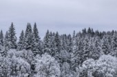 Freezing temperatures add to Clark County's winter weather woes