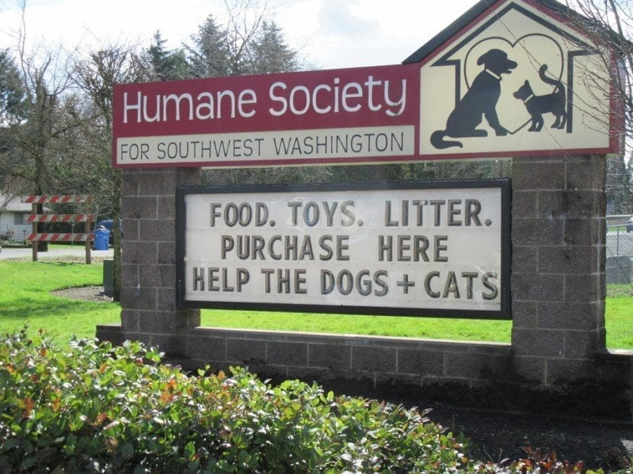 Last year, 57 teen volunteers contributed 2,984 service hours to the Humane Society for Southwest Washington. Photo courtesy of Carolyn Schultz-Rathbun