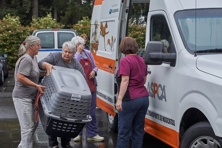 Volunteers help unload dog carriers from an ASPCA van at the Humane Society on Sunday. Photo courtesy of the Humane Society for Southwest Washington