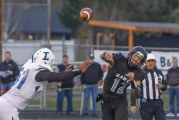 Hockinson headed to state football semifinals