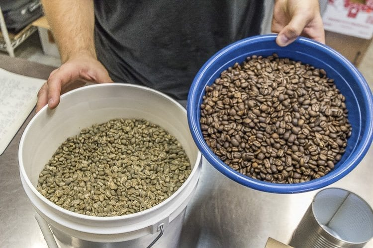Matthew Selivanow said that once roasted, the coffee beans grow to at least double the size of green coffee beans. Photo by Mike Schultz