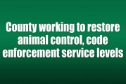 County working to restore animal control, code enforcement service levels