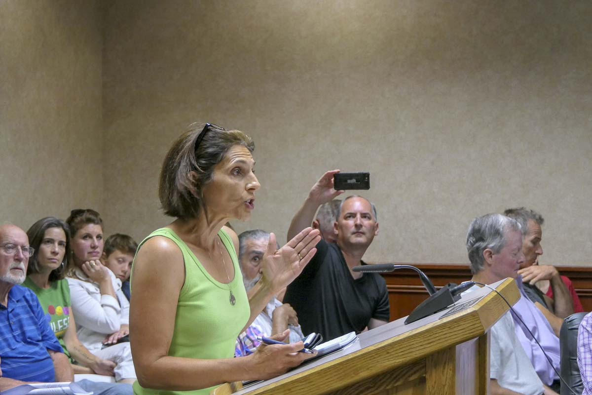 Camas resident Madeline Lyne speaks in support of better protections for trees during Monday's city council meeting. Photo by Chris Brown
