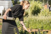 Gather and Feast Farms hosts summer farm dinners