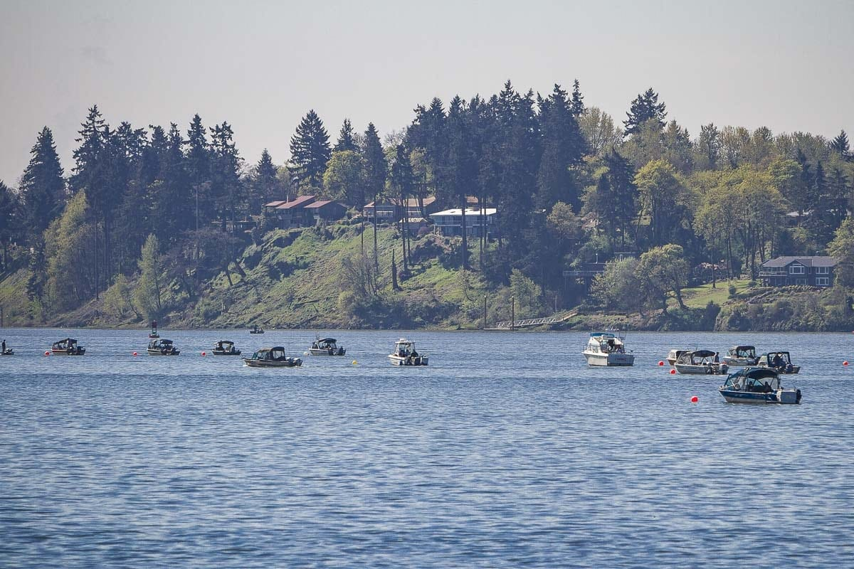 Starting Thursday (Sept. 13), fishing for salmon will be closed on the mainstem Columbia River from Buoy 10 upstream to Hwy 395 in Pasco under new rules approved Tuesday by fishery managers from Washington and Oregon. Photo by Mike Schultz