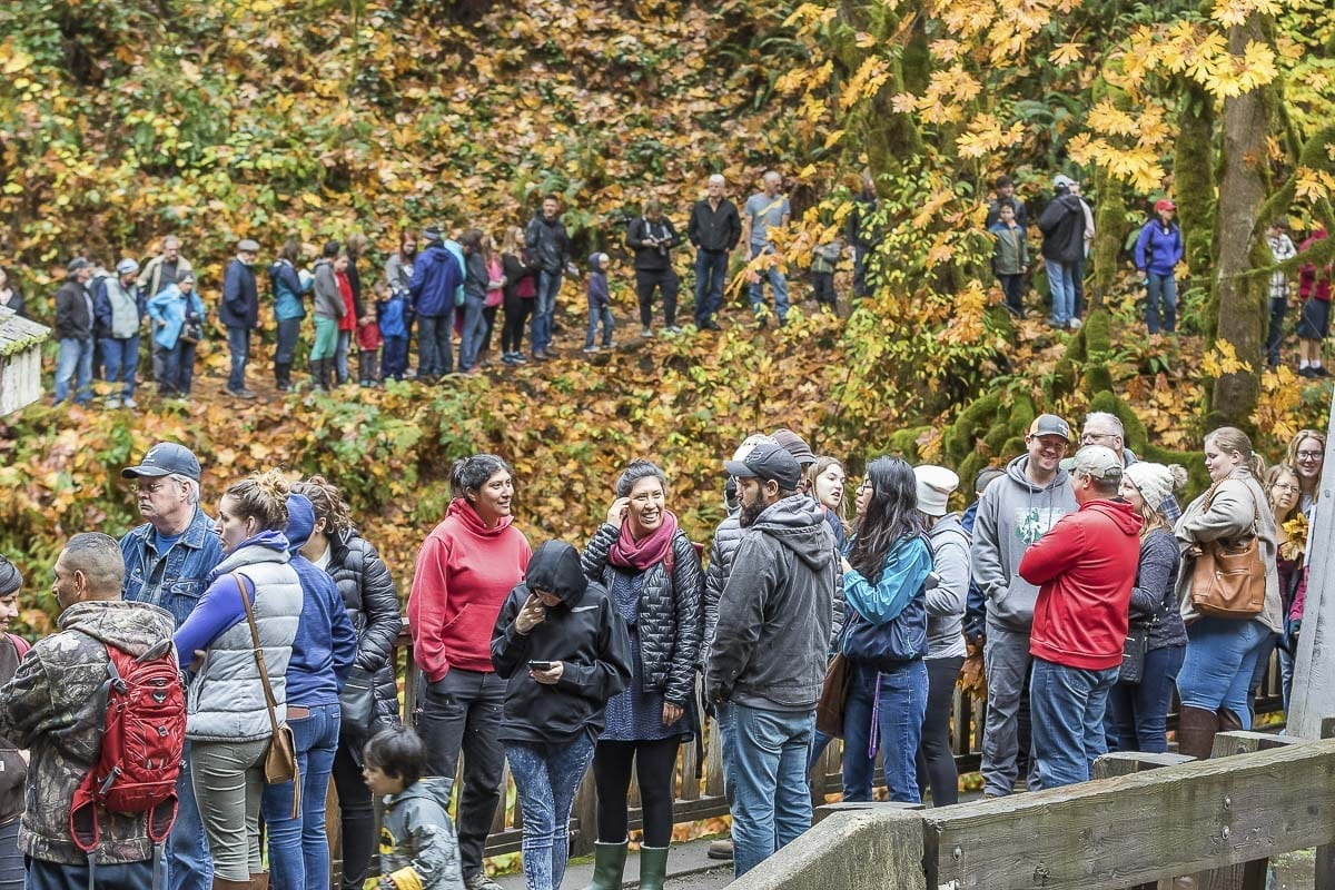 Families line up on the pathway to the Cedar Creek Grist Mill for apple cider pressing day. Photo by Mike Schultz