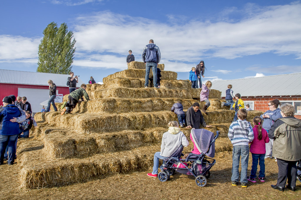 Numerous pumpkin patches around the southwest Washington and Portland/Vancouver Metro areas include seasonal activities such as hay bale mazes, corn mazes, hayrides and more. Photo by Mike Schultz