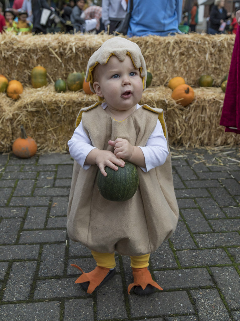 Deacon O'Neil, age 1 of Washougal, couldn't be cuter in his duck Halloween costume if he tried. O'Neil and many other youngsters filled Reflection Plaza in Wednesday for the annual Downtown Washougal Pumpkin Harvest Festival. Photo by Mike Schultz