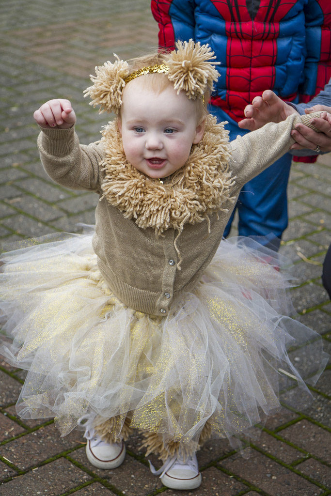 Harmony Whitman, age 1 of Washougal, isn't the fiercest lion in the land but she was a hit at the Downtown Washougal Pumpkin Harvest Festival Wednesday. Photo by Mike Schultz