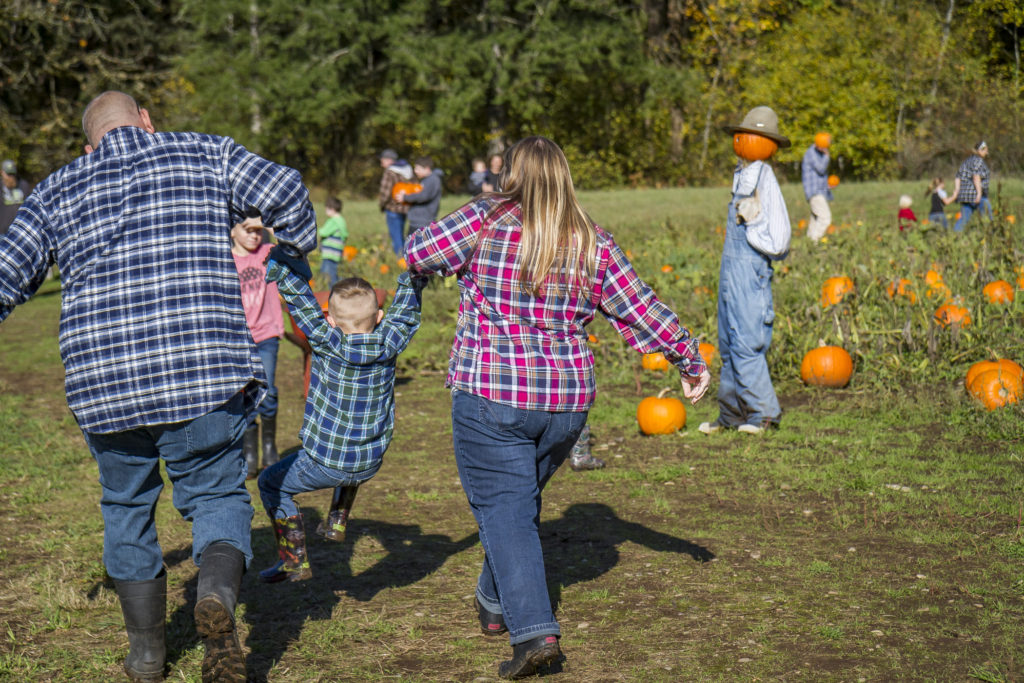 It was a sunny fall day at Pumpkin Lane at Pomeroy Farm as Greg and Jenna Dillon, of Battle Ground, walked through the pumpkin patch, swinging their son, Sean, age 5. Photo by Mike Schultz