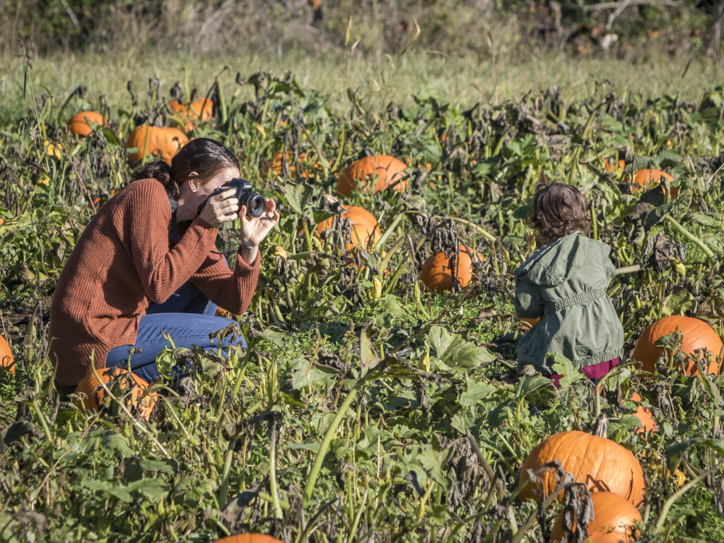 Danielle Parham, of Vancouver, stops to take a photo of her daughter, Addy, in the pumpkin patch at Pumpkin Lane at Pomeroy Living History Farm. Photo by Mike Schultz