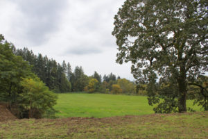 The new Schmid Family Park in Washougal includes more than 10 acres of floodway area near the Washougal River, pictured here from the park's upper section, off Northeast 32nd Street in Washougal. Photo by Kelly Moyer.