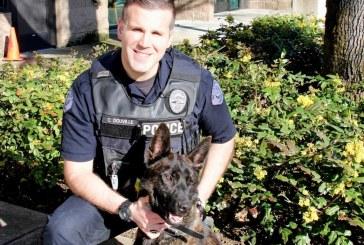 With marijuana's legalization, training for region's police K9s has shifted