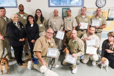 Humane Society and Larch Corrections celebrate first 'graduating' class of dogs