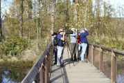 National refuge near Washougal offers serenity, easy walks, some of area's best bird-watching