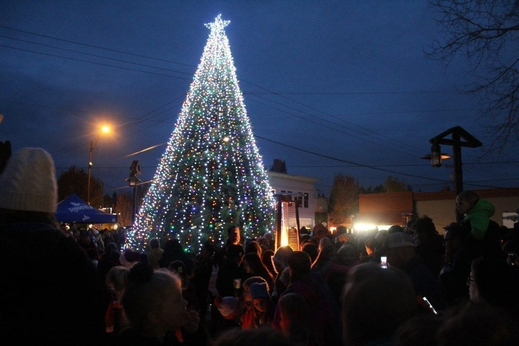 Hundreds of community members gathered in Overlook Park in Ridgefield Saturday evening to watch as the city's Christmas tree was lit during the annual Christmas Tree Lighting Festival. Photo by Joanna Yorke