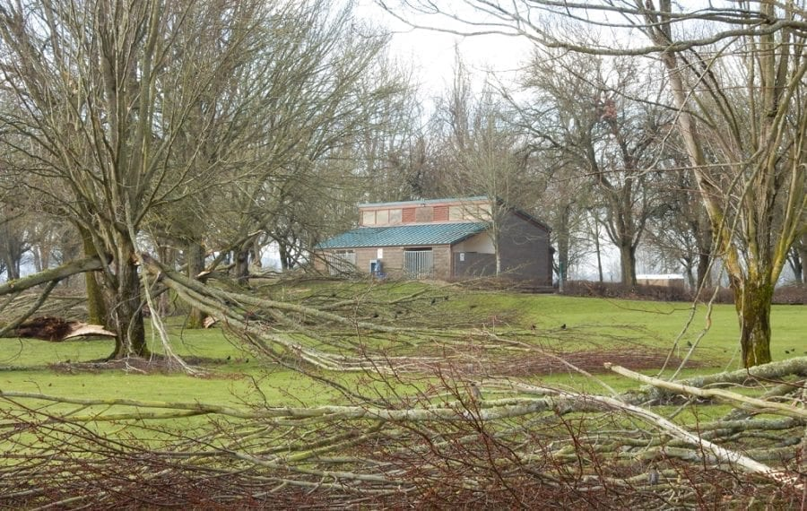 Clark County Parks crews are cutting trees and removing debris at Vancouver Lake Regional Park, which is closed due to damage caused by recent winter storms.
