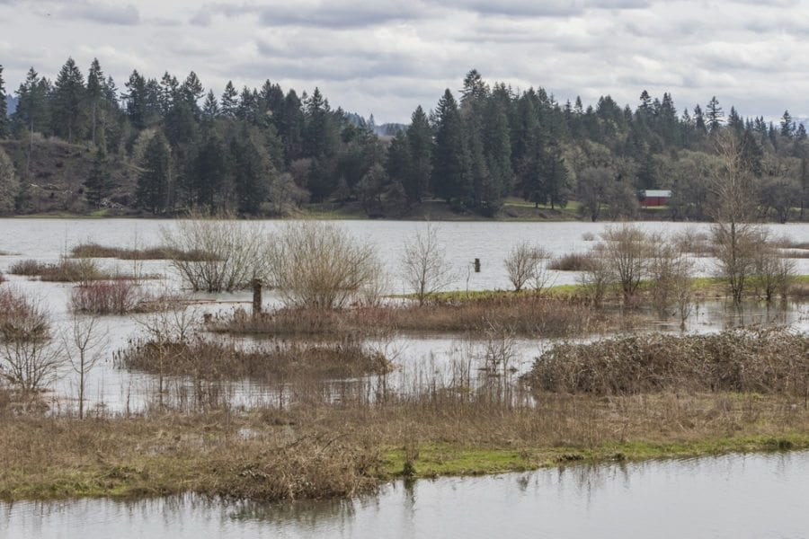 Recent storms have drenched most areas of Clark County, including the overflowing 'Wetland Bottoms' area in La Center pictured here. A new, countywide hazard mitigation plan will help local cities, fire districts and schools plan ahead for natural disasters like floods, earthquakes, severe weather and other natural hazards. Photo by Mike Schultz
