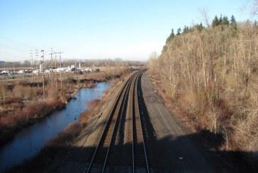 Senate approves Rep. Liz Pike's short-line rail jobs bill