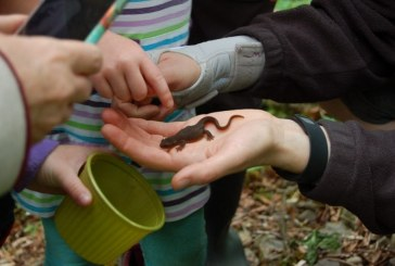 Slither, crawl or hop to the Water Center's Critter Count on April 8