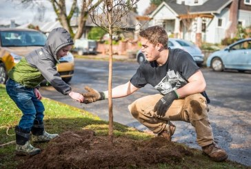 Great trees create great streets: Vancouver celebrates Arbor Month