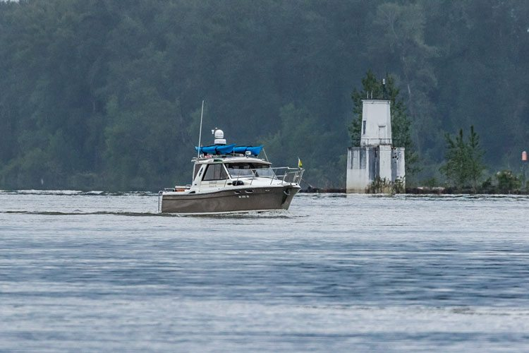 Starting Sat., July 1, anglers fishing the lower Columbia River must release any adult summer chinook salmon they intercept under new rules approved Wednesday by fishery managers from Washington and Oregon. Photo by Mike Schultz