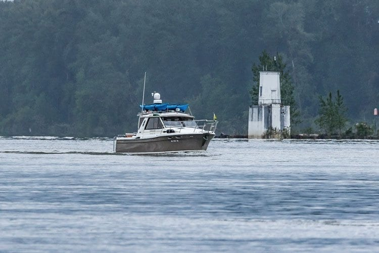 The fishery for summer chinook salmon reopened Friday and is scheduled to run through July 31 on the lower Columbia River. Photo by Mike Schultz