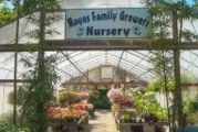 Owner of Hayes Family Growers has been gardening since the age of six