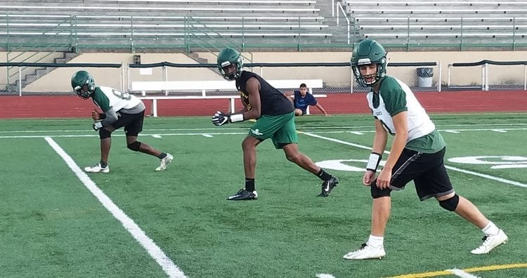 Nadil Hodzic, near, and the Evergreen receivers hope to put up big numbers this season. Photo by Paul Valencia