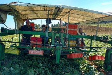 The heritage and legacy of Clark County's Bi-Zi Farms