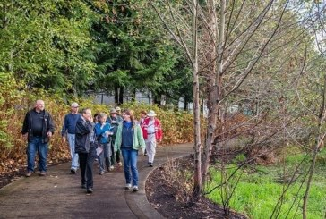 Neighborhood Tree Steward training applications open