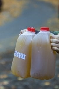 Each visitor to the pressing day was able to bring home two jugs of freshly pressed apple cider. Photo by Mike Schultz