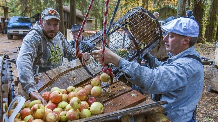 Volunteer Charlie Davis worked at the apple washing station, and poured apples into a rotating, belt driven drum that scrubbed the fruit of impurities. Photo by Mike Schultz