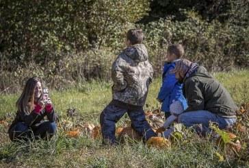 Pumpkin Lane at Pomeroy Farm provides fall fun