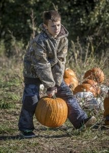 Jericho Hanson of Battle Ground chooses a pumpkin from the pumpkin patch at Pomeroy Farm Saturday. Photo by Mike Schultz