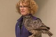 BirdFest welcomes birds and birders alike to Ridgefield
