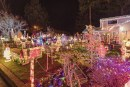 Local churches and organizations offer last minute Christmas activities