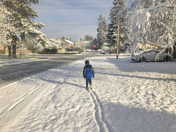 This youngster used part of his morning to venture out along NE 39th Ave. in east Vancouver Wednesday morning, where more than an inch of snow had accumulated overnight. Photo by Andi Schwartz