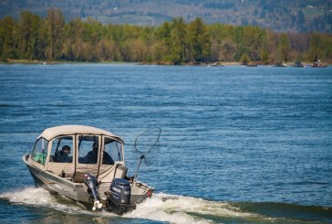 Low returns expected to restrict Washington's salmon fisheries