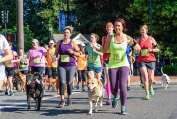 Humane Society events raise money to help animals
