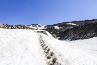 A worn path shows the way for hikers on the way to the summit of Mount St. Helens. Photo by Eric Schwartz