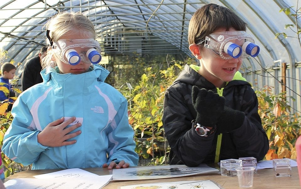 Primary school students examine insects as part of a science field trip on the CASEE campus. Photo provided by the Battle Ground School District