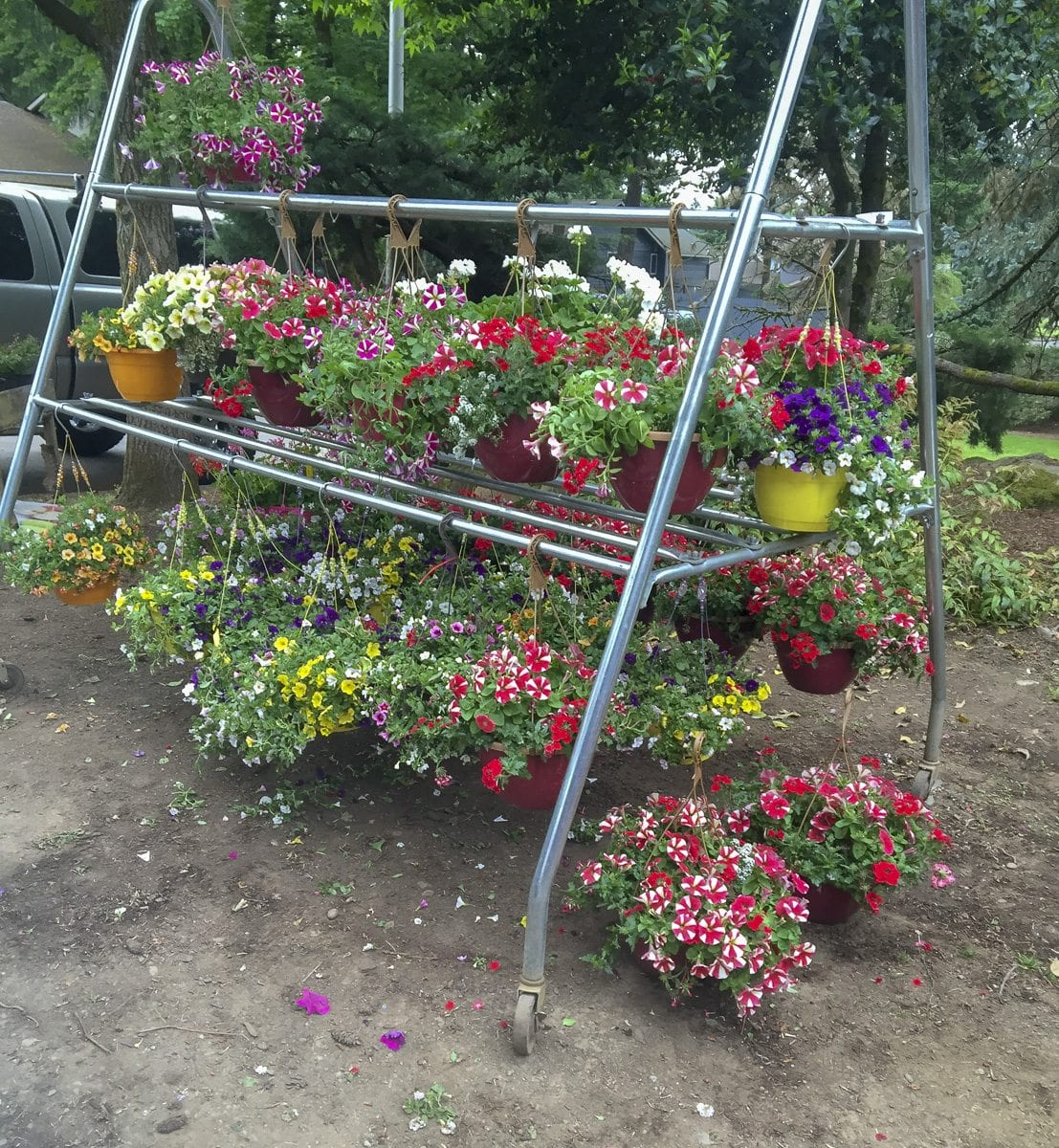 """Vancouver police have arrested a suspect described as a """"prolific garden center thief"""" and recovered 157 stolen plants, a garden cart, a display rack and methamphetamine after a string of thefts reported at the Fred Meyer located at 11325 SE Mill Plain Boulevard. Photo courtesy of Vancouver Police Department"""