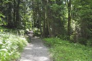Trails open to all users at Whipple Creek Regional Park