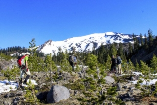 Hikers gather after emerging from the tree line en route to Mount St. Helens Tuesday. Photo by Eric Schwartz