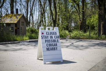 Reported cougar sightings lead to precautions at Ridgefield National Wildlife Refuge