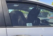 Dog in parked car sparks calls to police