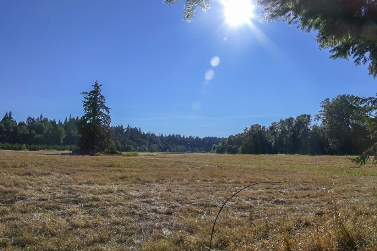 This 105-acre property near Daybreak Road and NE 259th Street will soon become Clark County's newest regional park. Photo by Chris Brown